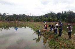 Idam capacita produtores rurais para atividade de piscicultura