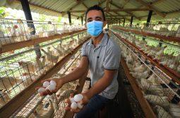 Cartão do produtor estimula crescimento do setor primário no Amazonas
