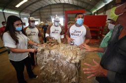 Em Manacapuru, Wilson Lima visita fábrica de juta e malva que terá produção valorizada