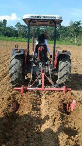 Em Uarini, Idam capacita produtores de farinha para cultivo mecanizado de mandioca